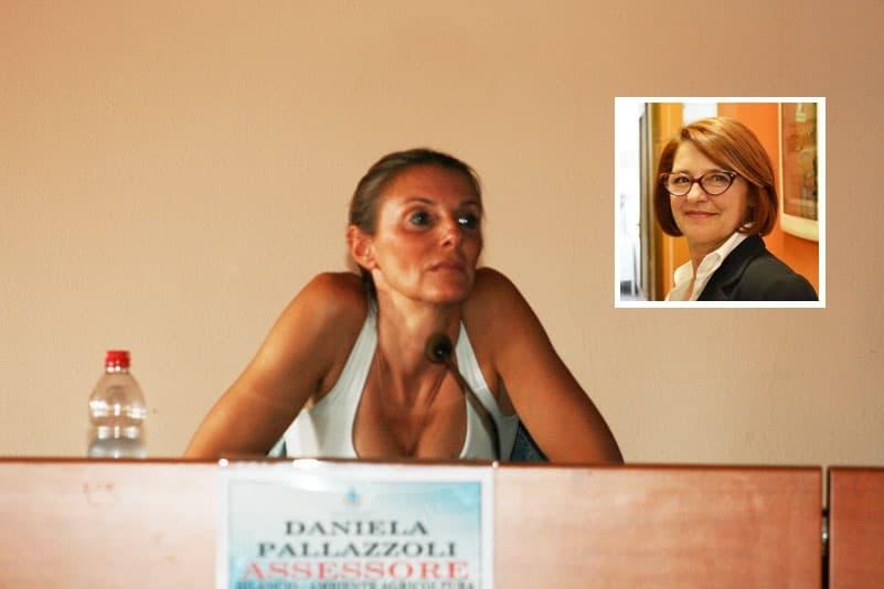 assessore Daniela Pallazzolo